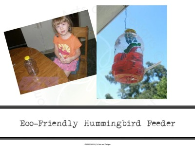 Eco-Friendly Hummingbird Feeder