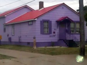 Grandma's Purple House