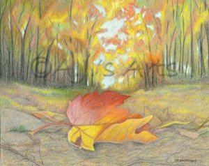 This is a Color Pencil Drawing I did in 2010.