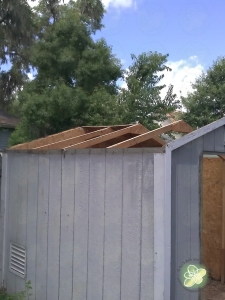 Roof gone - time to call in the help