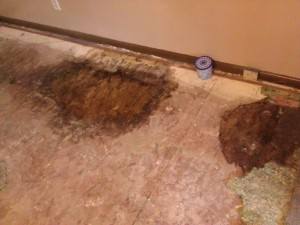 What we found when we removed the carpet.