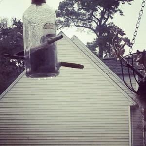 Bird feeder with ice