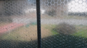 The bubble wrap on the window